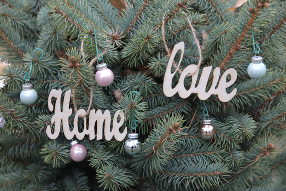 love and home 2